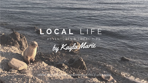 Local Life -Kayla