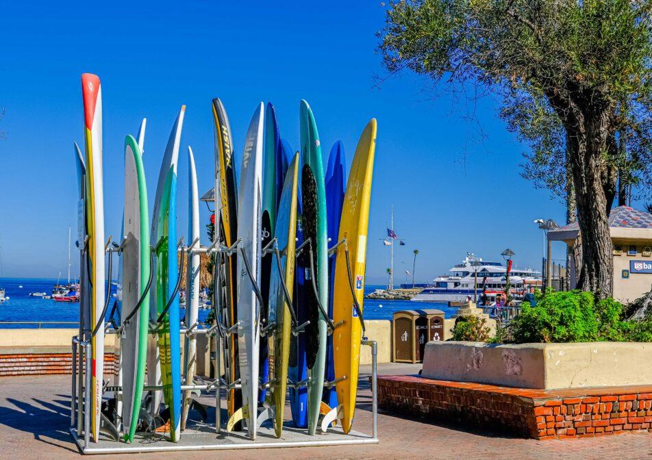 Catalina-Surf-Board